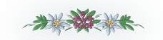 fleure3